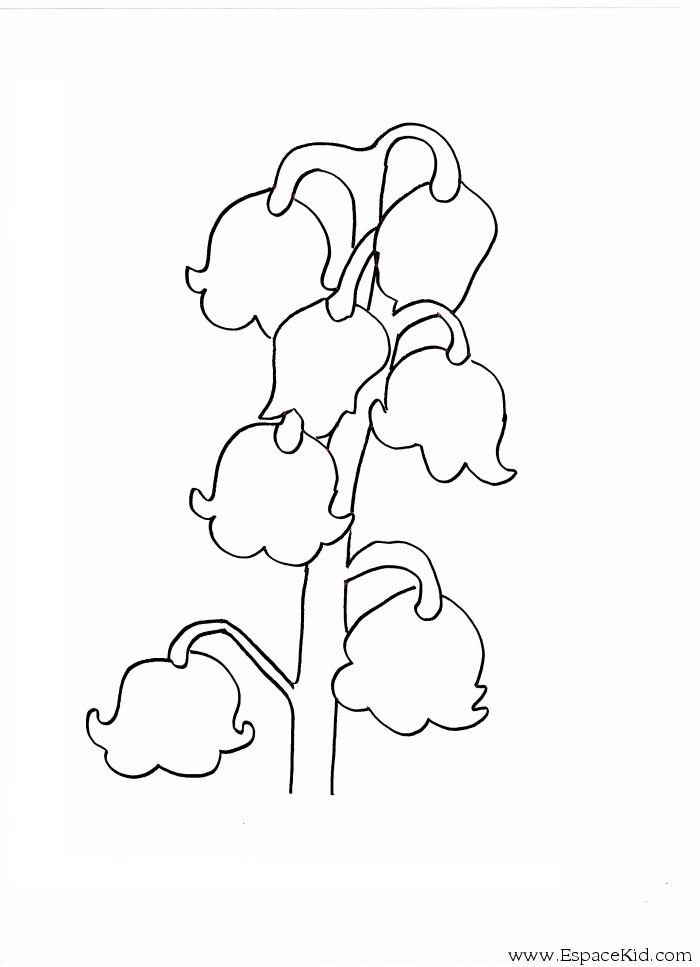 Coloriage muguet imprimer dans les coloriages muguet - Muguet dessin ...