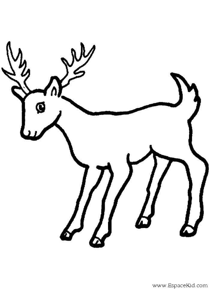 Coloriage rennes de no l imprimer dans les coloriages rennes dessin imprimer - Image rennes noel ...
